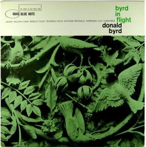 Byrd in Flight